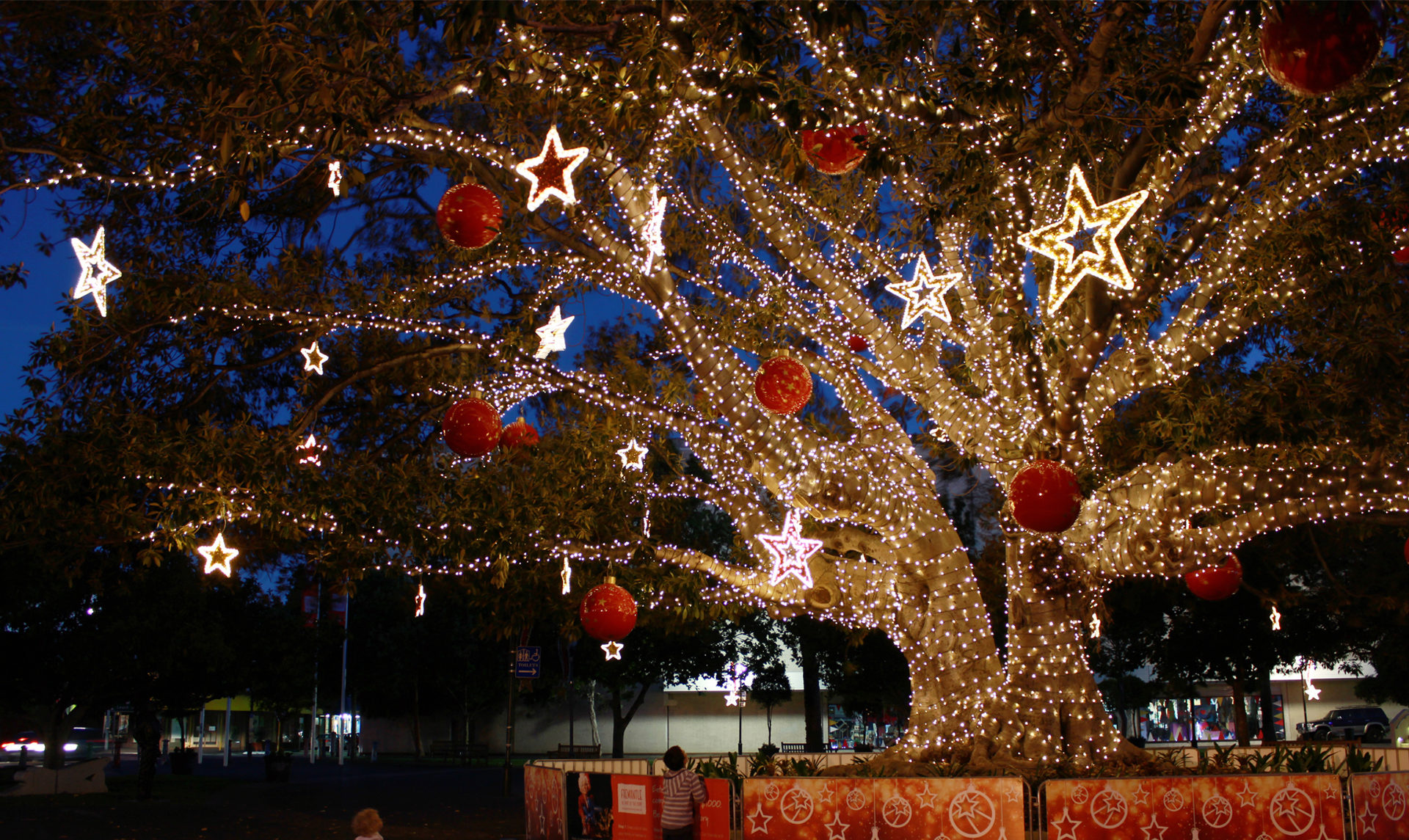 Ideas To Help You Get Your Festive Lighting Sorted At The Last Minute Mk Illumination